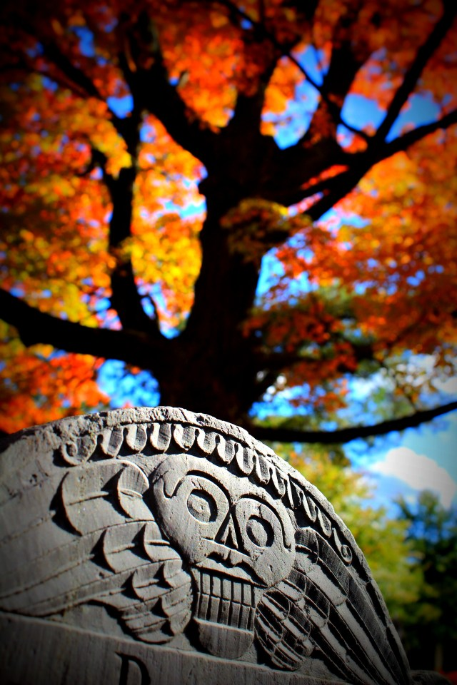 Death's Head Gravestone and Fall Foliage