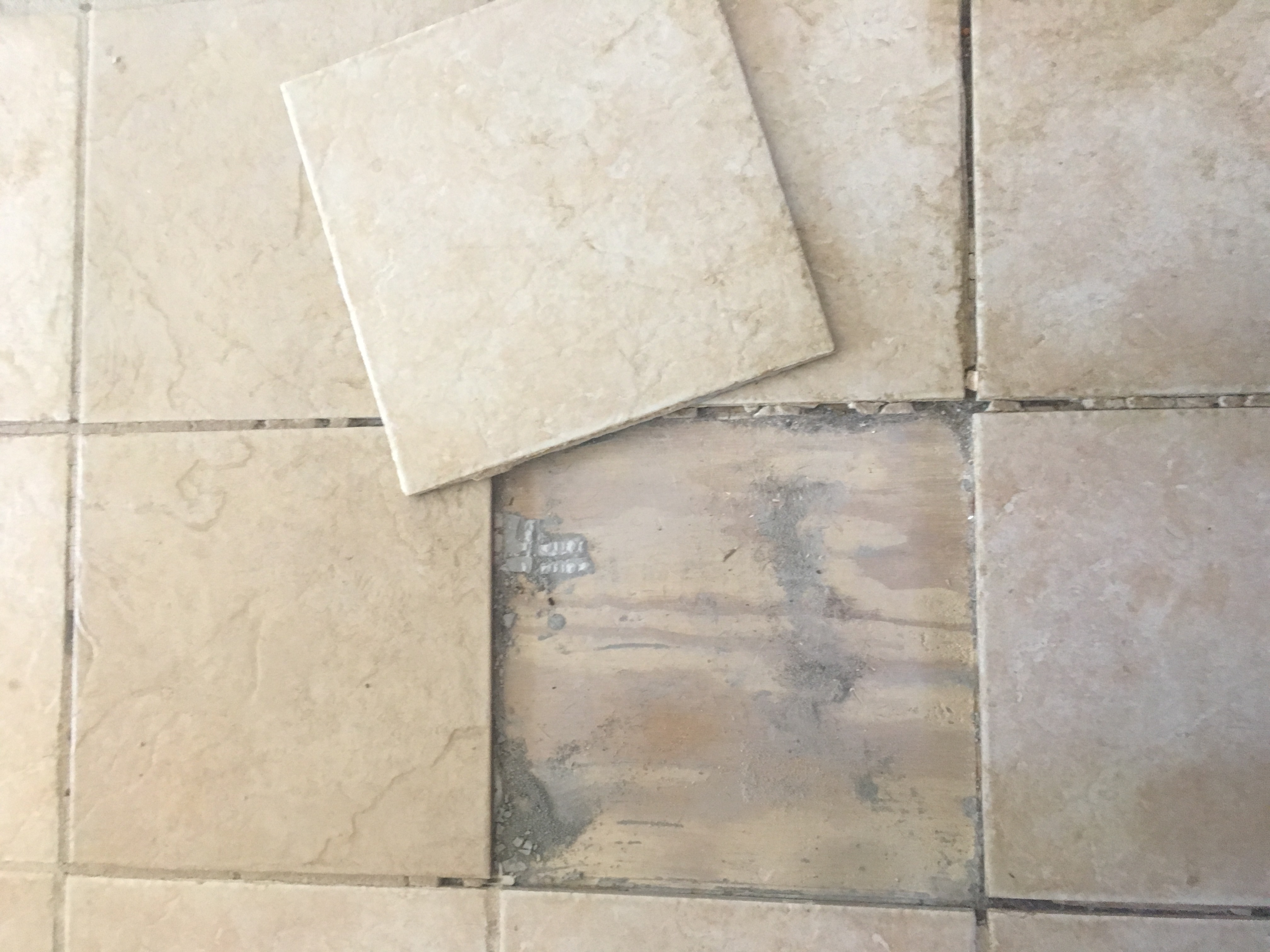Week 2 Tile
