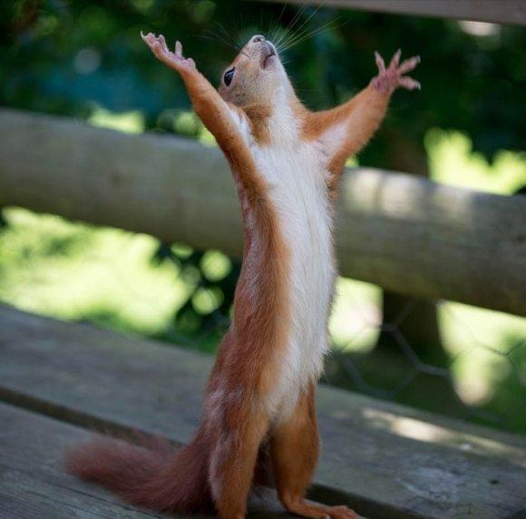 Hallelujah! I'm done updating posts!