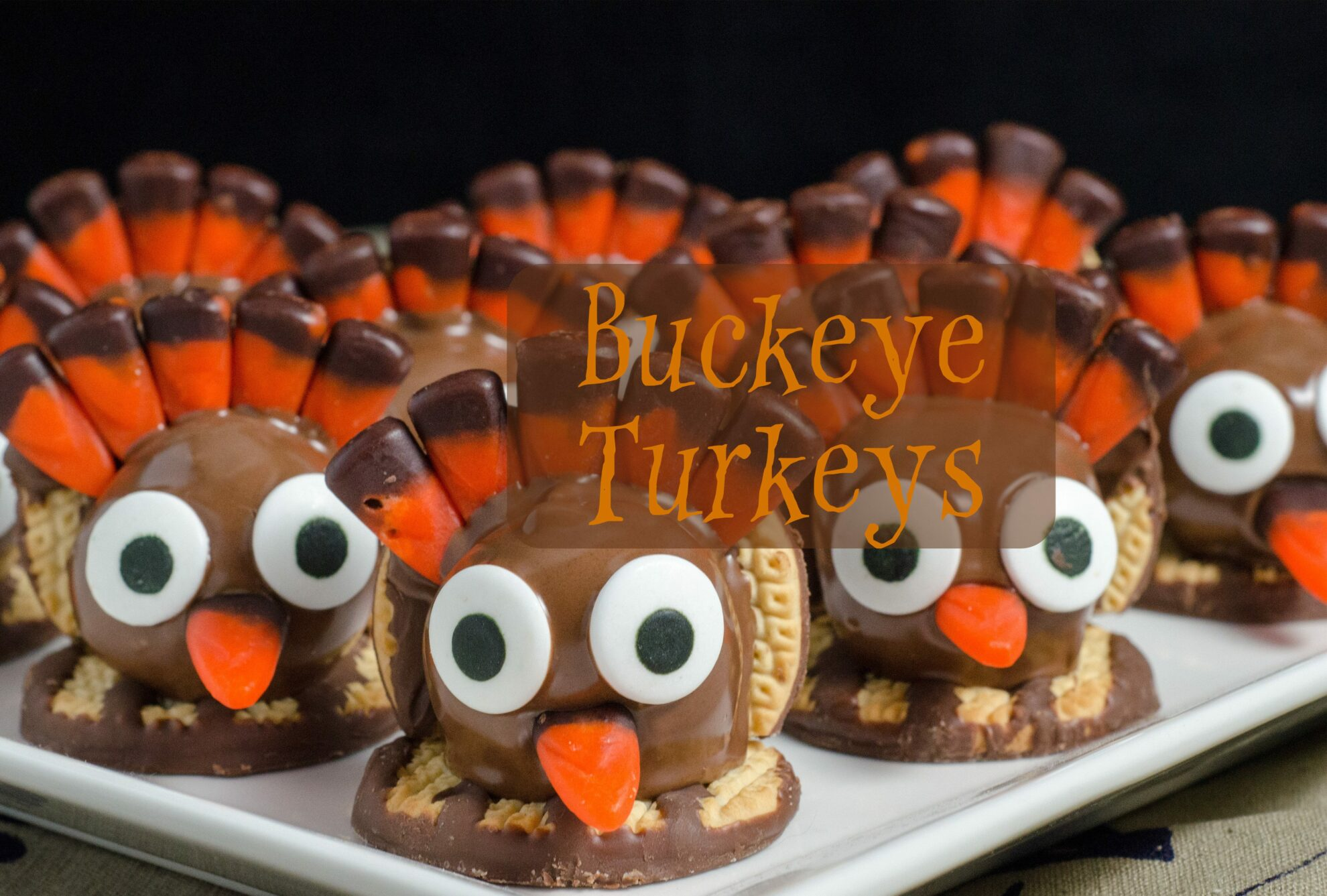 Turkey Buckeyes: classic peanut butter and powdered sugar buckeyes turned into turkeys. Perfect for Thanksgiving. Step-by-step pictures and printable recipe.