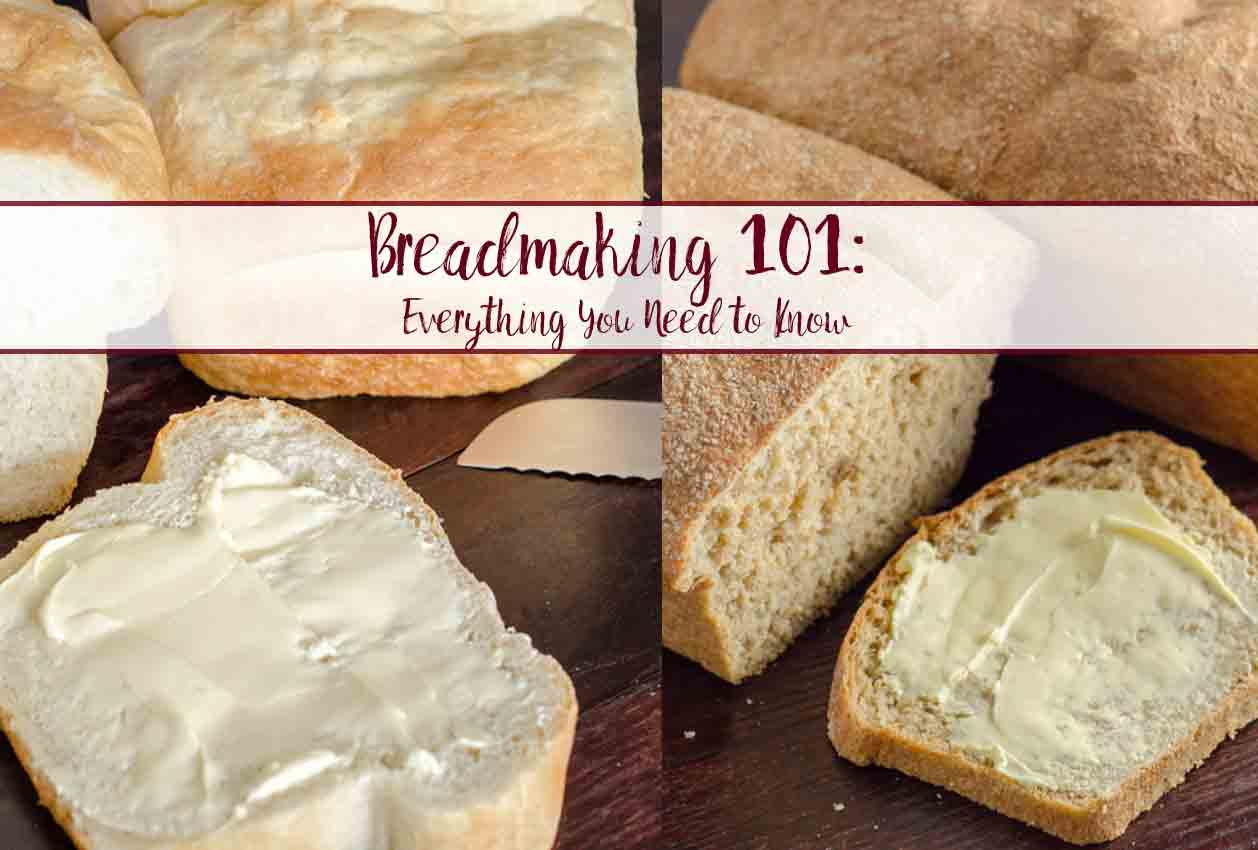 Bread Making 101: How to Make Bread, Everything You Need to Know