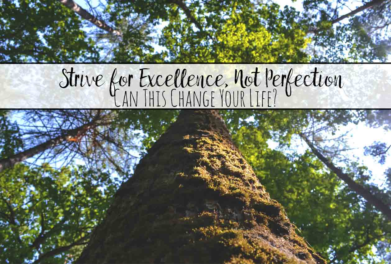 Strive for Excellence, Not Perfection: Can this change your life? The difference between excellence and perfection. Which works and why. Action steps to take to help you strive for excellence.