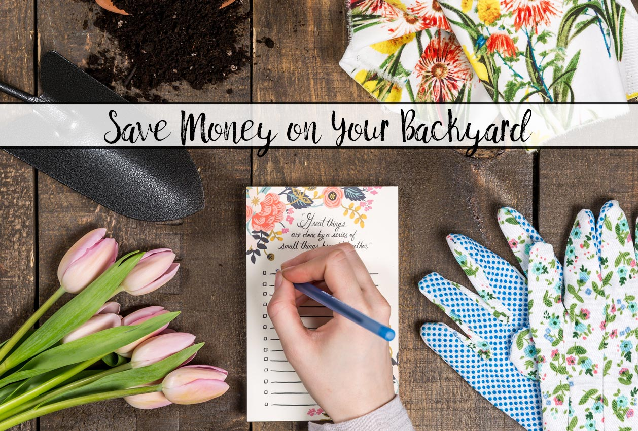 How to Save Money on Simple Backyard Upgrades. DIY, mulch options, transplants, and more on how to save money while getting the perfect backyard!