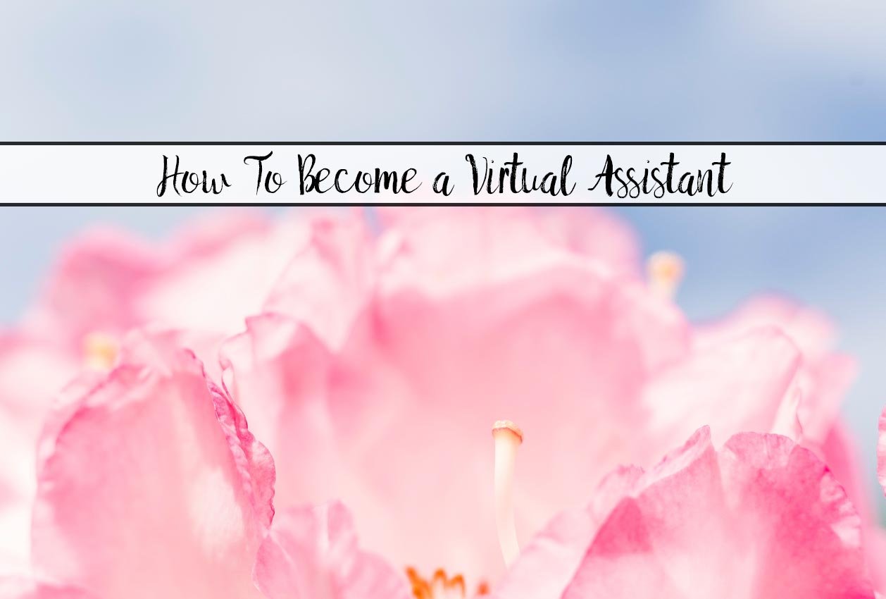 How to Become a Virtual Assistant (& Where the Jobs Are)