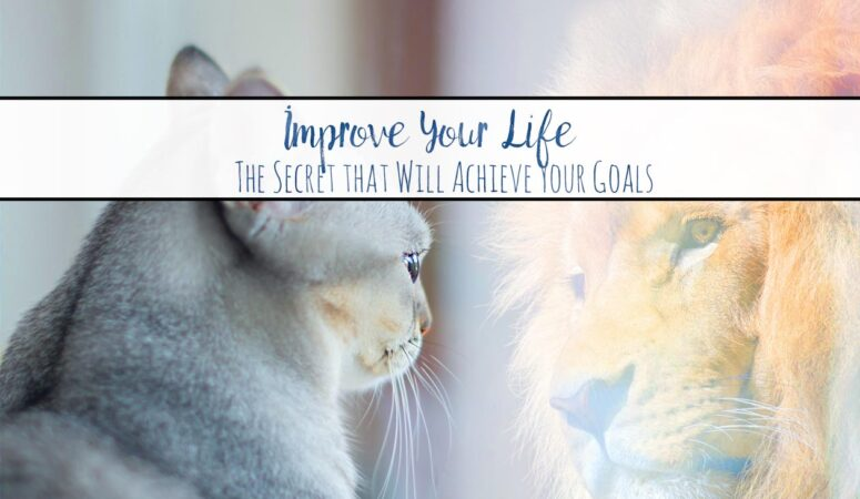 Improve Your Life. How to Use Goals Vs. Systems. {Free Printable}