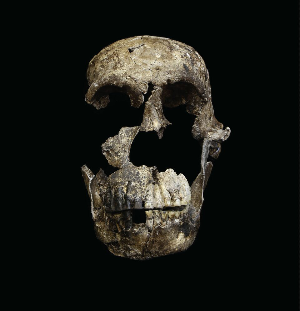Exclusive Interview with Lee Berger: A Second Cave, Homo naledi Fossils Only 236-355k Years Old