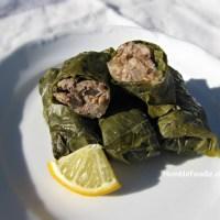 Dolmas (Stuffed Grape Leaves)