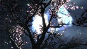 The Eldergleam Tree