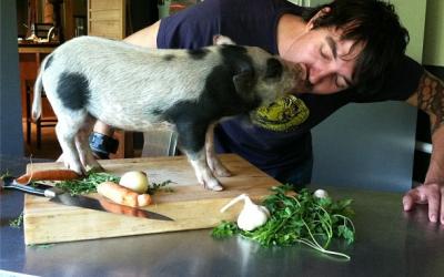 Derek Ronspies of Le Petit Cochon