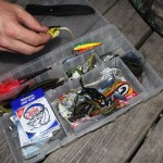 How Many Baits Does it Take to Catch a Fish?