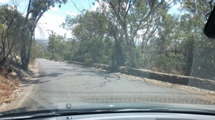 road down from oxley lookout