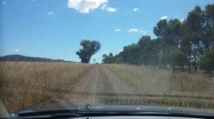 road got narrower