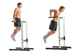 Parallel dips for chest exercise