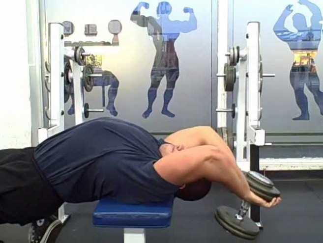 dumbbell pullover chest workout