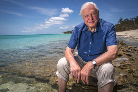 Sir David Attenborough leaves the BBC to Netflix and binge