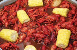 fresh-caught-crawfish-boil