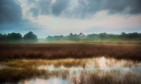 Merritt Island National Wildlife Refuge, Titusville, Florida  – A Different Kind of Space on the Space Coast