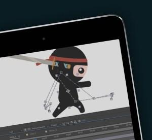 ninja_ 760_700_ny