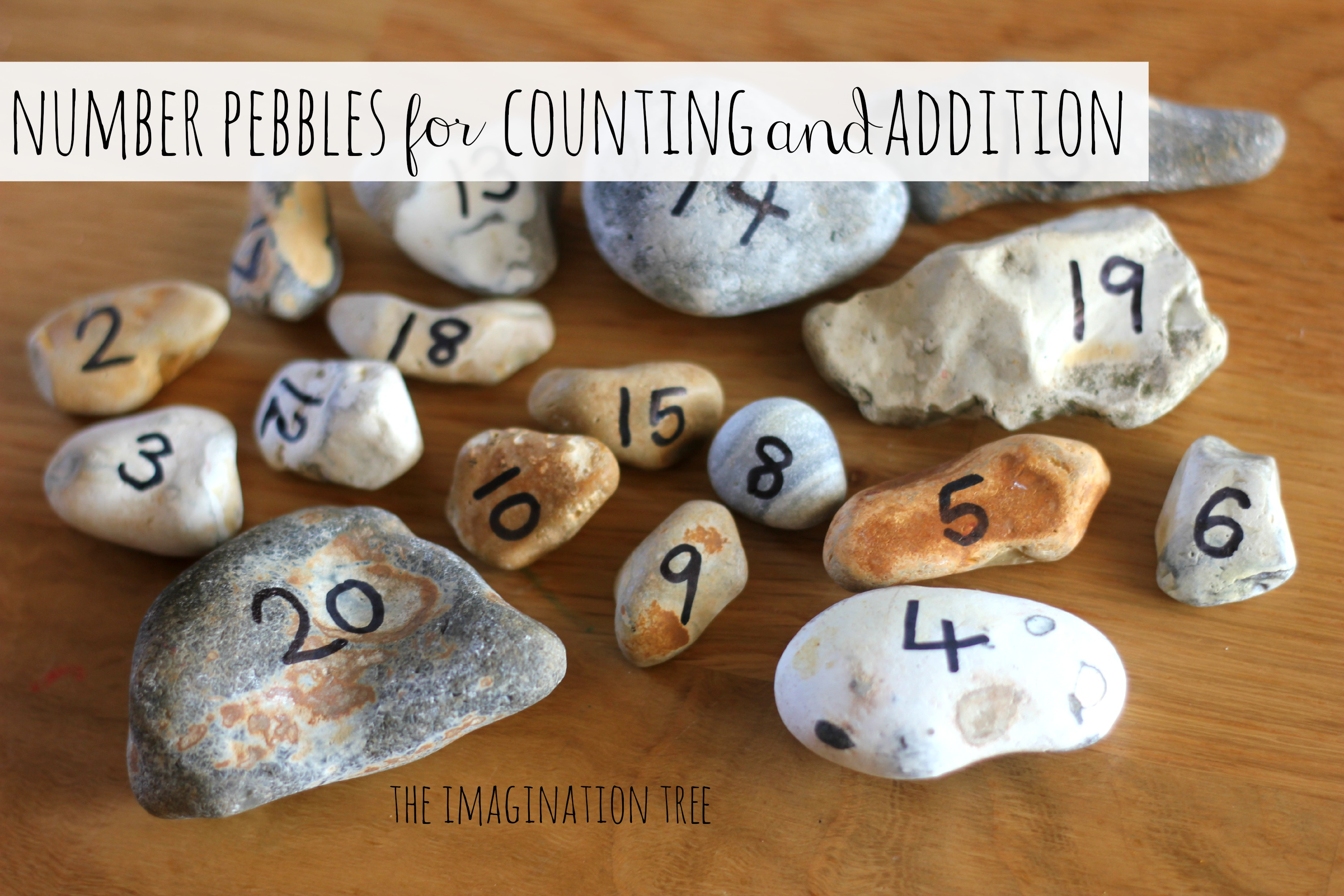 Counting Nuts Worksheet