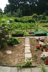 Our neat garden, ready to grow