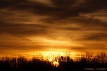 6) sunrise