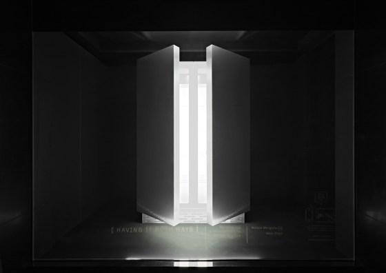 Barneys-New-York-windows-margaret-lee-the-impression-04