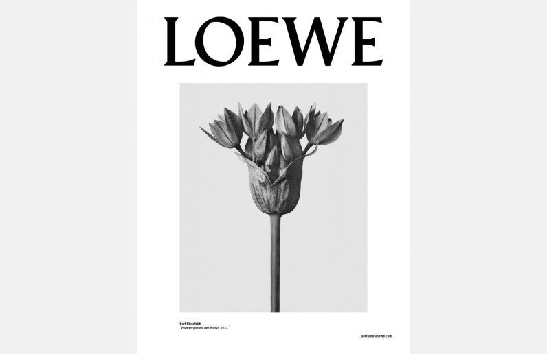 Loewe-001-fragrance-ad-campaign-fall-2016-the-impression-03