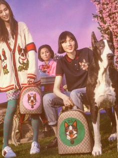 Gucci-year-of-the-dog-collection-the-impression-25