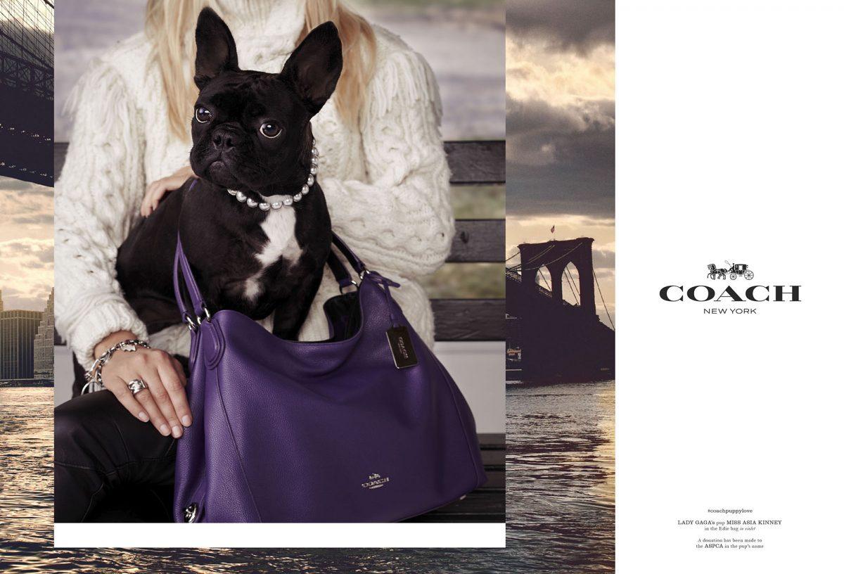 coach_fw15_puppy-love_01