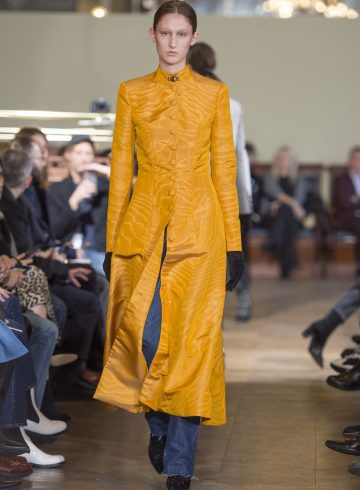 Olivier Theyskens Fall 2017 Fashion Show