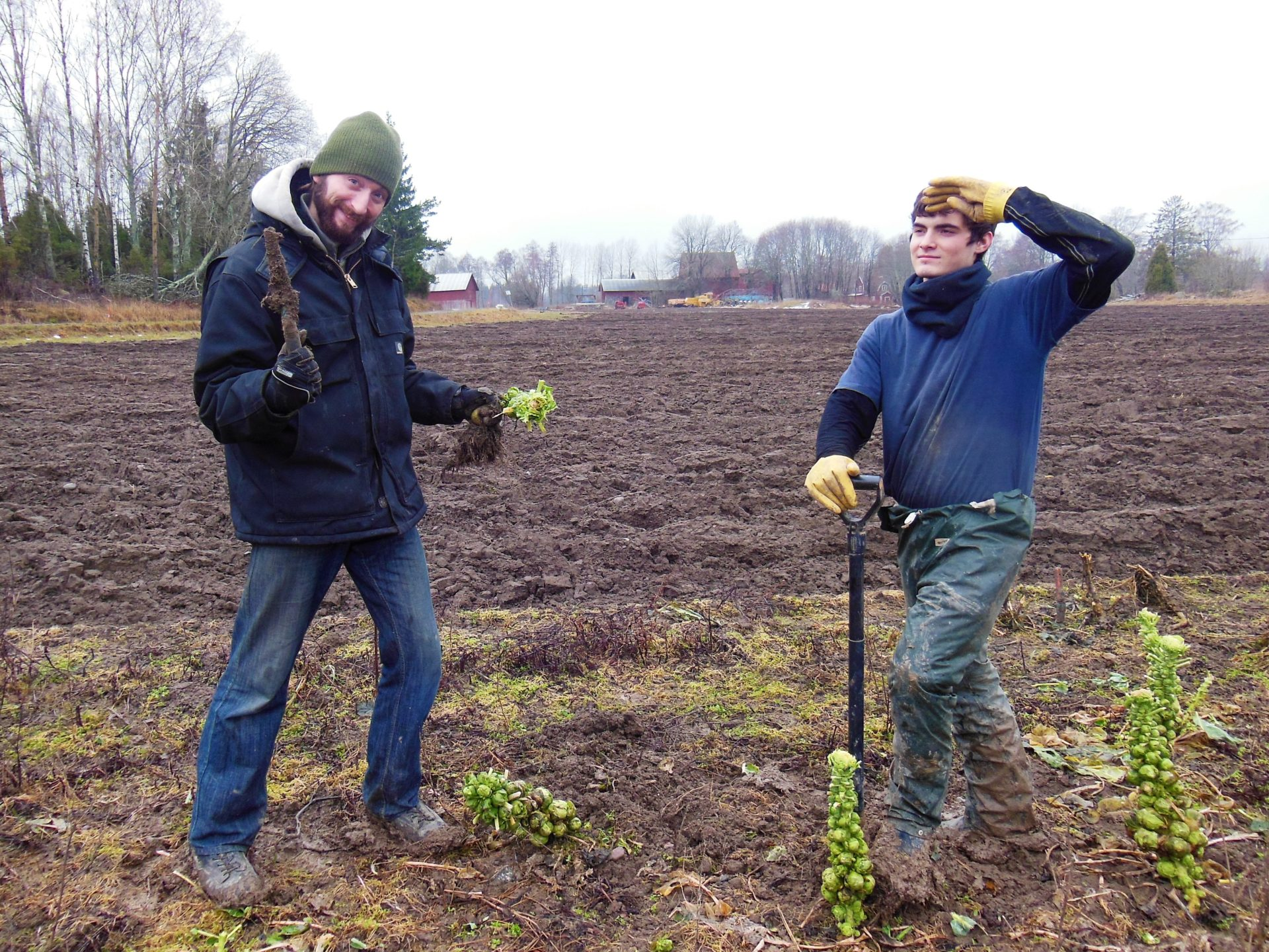 Nathanael, Volunteering, WWOOF, Bjorklinge, Sweden