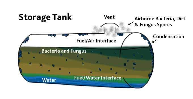 Marine Fuels and Microbial Infestation in Fuels