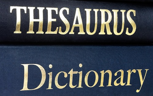 dictionarythesaurus