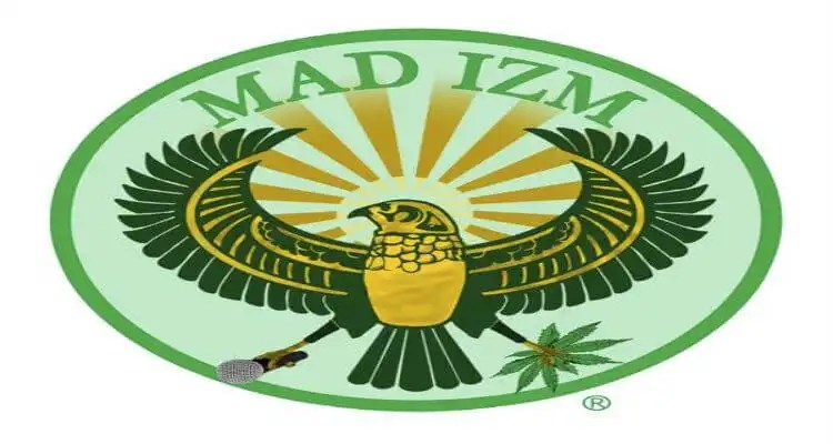 WHAT IS MADIZM?? HAKIM GREEN FEATURING GENERAL STEELE AND KRS ONE
