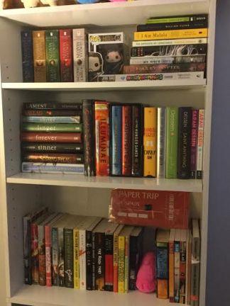 Shelf 1 (Desk)