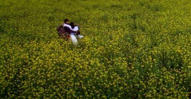 Dilwale dulhania le jayenge full movie in tamilrockers