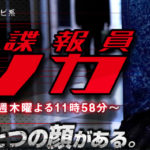 Erika the Secret Agent (Himitsu Chouhouin Erika)