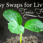 product swaps for a toxic free home