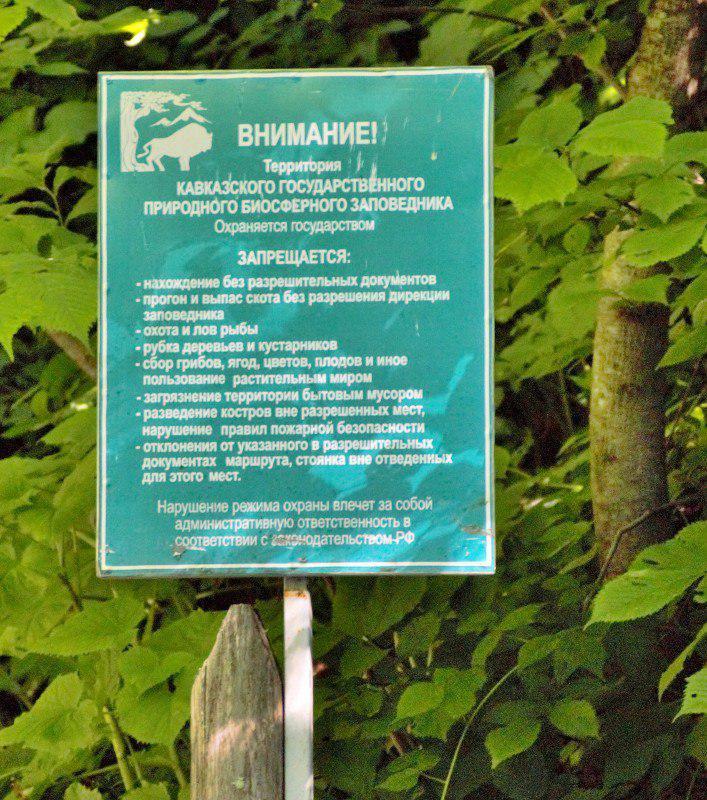 «Приезжал рыбачить и Медведев». Как организована браконьерская охота и рыбалка для VIP-персон в Кавказском заповеднике