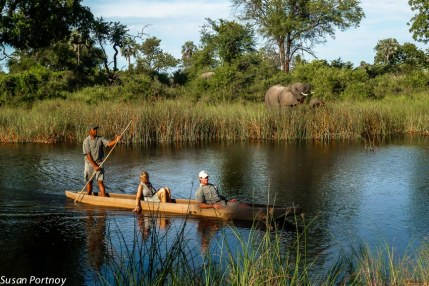 After a morning walk with the herd, we were taken across a small river to have a picnic breakfast and watch the elephants graze across from us