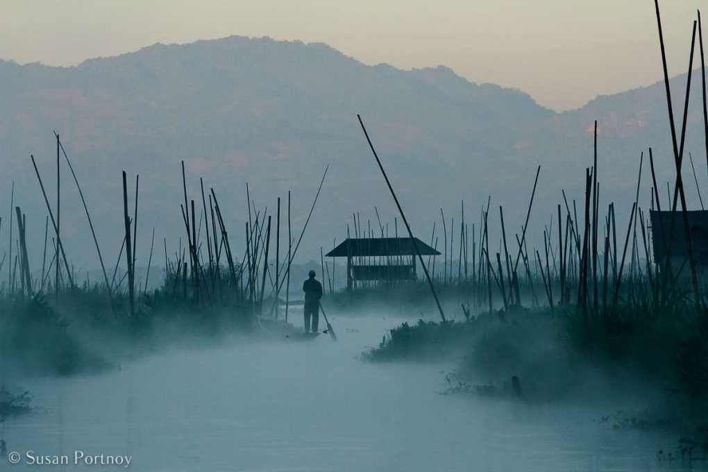 Stunning Silhouette Photos Guaranteed to Inspire Your Travels-A man paddles through the extensive floating gardens in front of our hotel, the Villa Inle, on Inle lake in Myanmar.