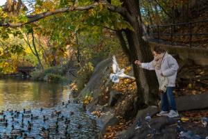 Lillian Bobo feeds a flying pigeon in Central Park