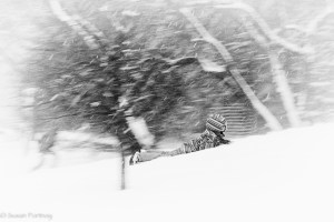 little boy sleds down hill in the snow backwards in New York City