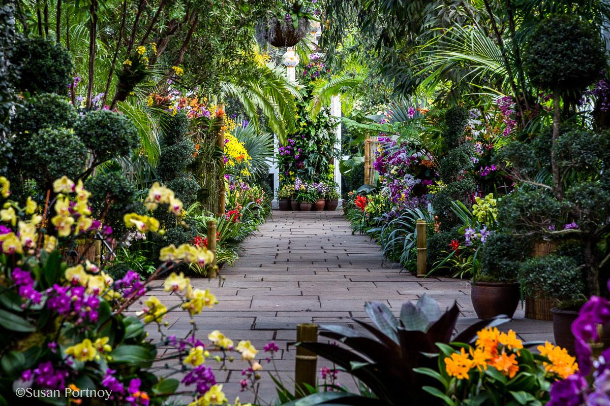Ny Botanical Garden Orchid Show Thailand 32 The Insatiable Traveler