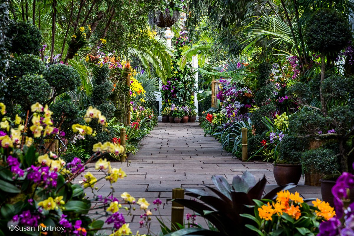 Visitor Walkway In The NY Botanical Garden Orchid Show: Thailand