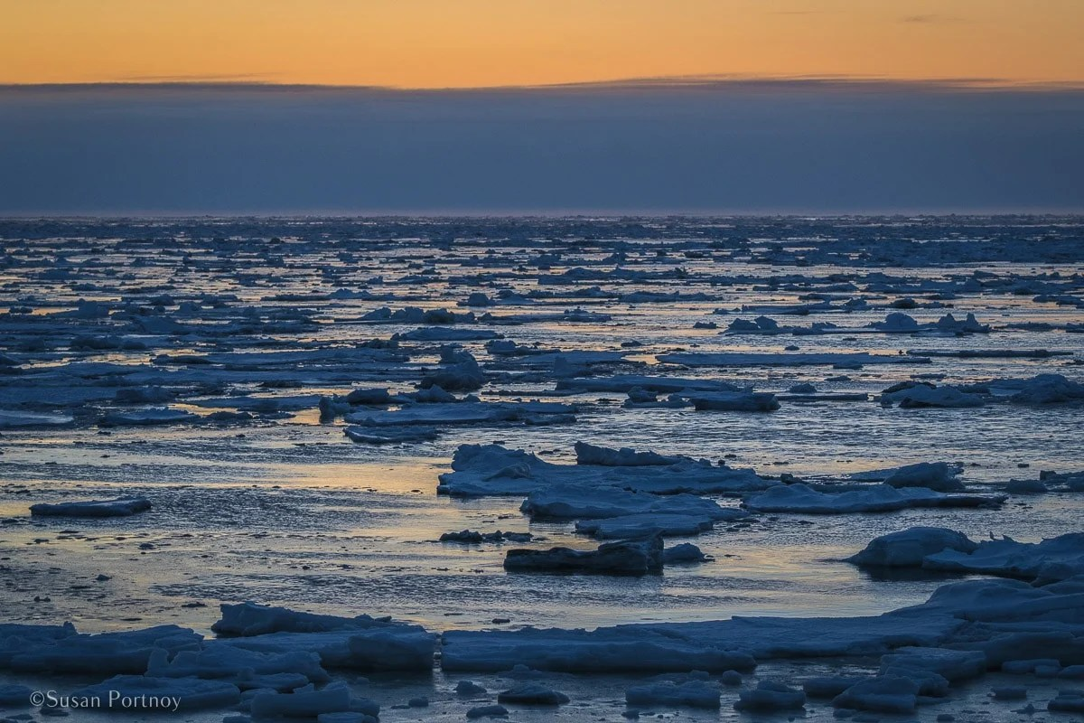 Sunrise over the ice on Hudson Bay | What it's like to be on Canada's only Walking Polar Bear Photo Safari