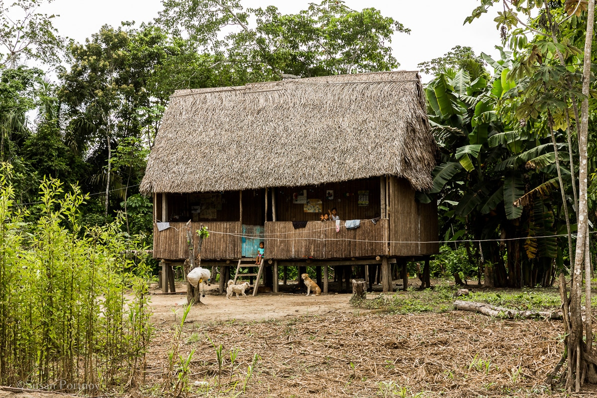 a stilted house in the Amazon | Amazon River Cruise Peru -International Expeditions-01-3