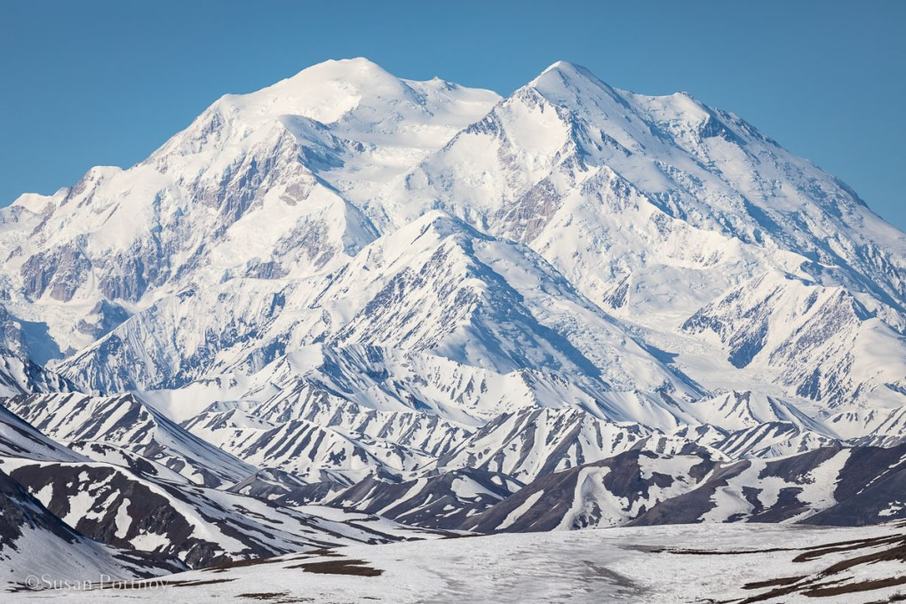 Mount Denali (formally known as Mount McKinley) is the tallest peak in North America. - Lessons Learned on an Big Ship Alaskan Cruise -137220180601