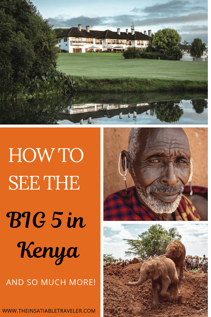 How You Can Enjoy Kenya's Big 5 and More, If you're looking for an African holiday with a diverse range of activities and environments, you're in luck. Here's how you can do Kenya's Big 5 & beyond.
