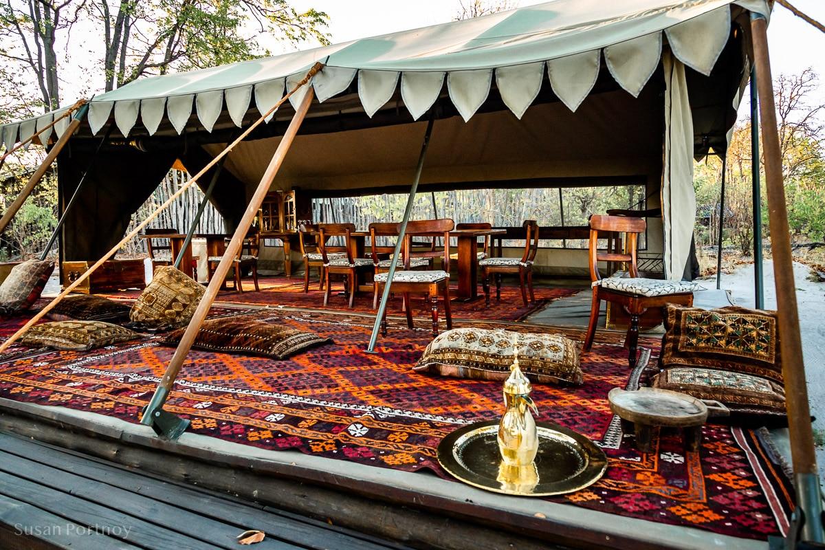 Selinda Explorers Camp- Botswana Safari -301-3